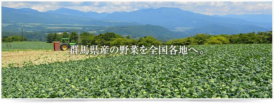 群馬県産の野菜を全国各地へ